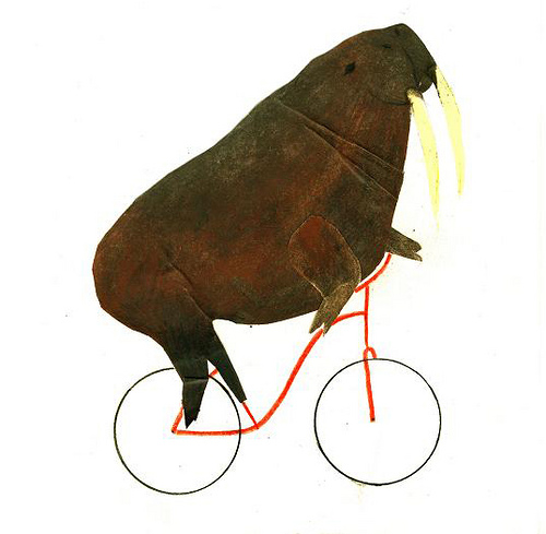 Walrus Cycling by inessancheznadal on Flickr