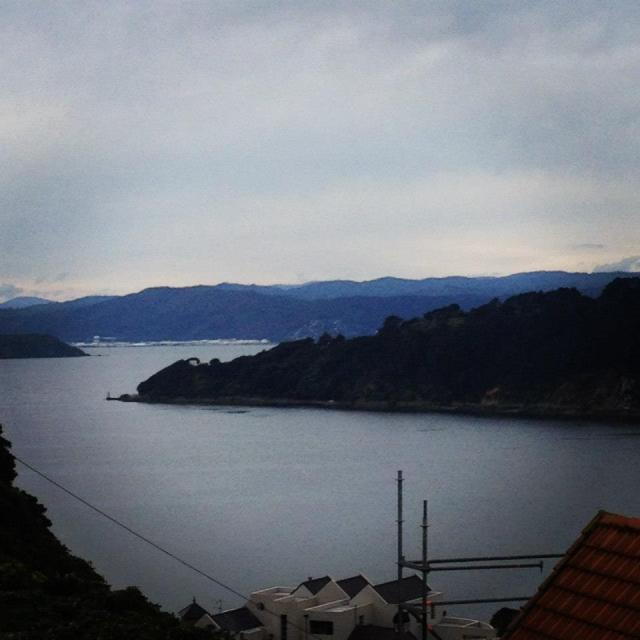view from Hataitai Road