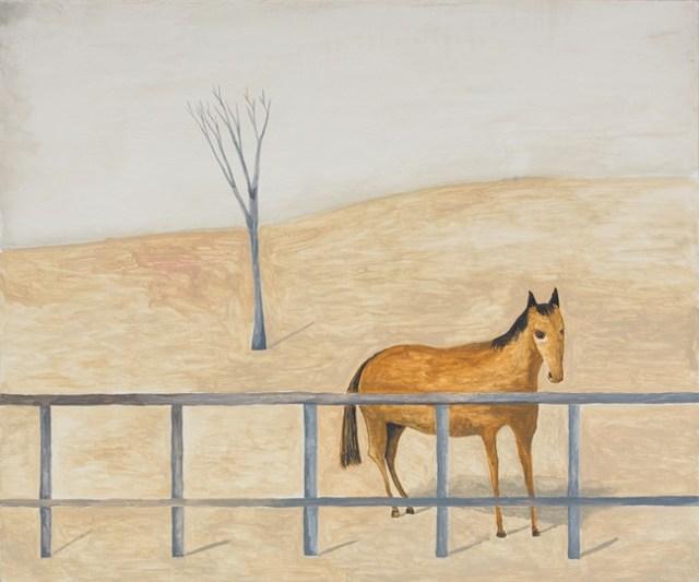 Horse behind fence Noel McKenna